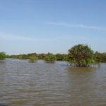 Cambodge - Siem Rep - Tonle Sap