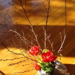 Noisetier, moutarde, tulipes (Spike winter hazel, mustard, tulips) - Style libre (Free style)