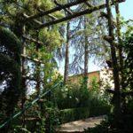 Parc de la Belle - Arche d'échelles en bois