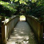 Parc de la Belle - Pont en bois