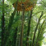 Parc de la Belle - Cabane des Lémuriens - cabane dans les arbres