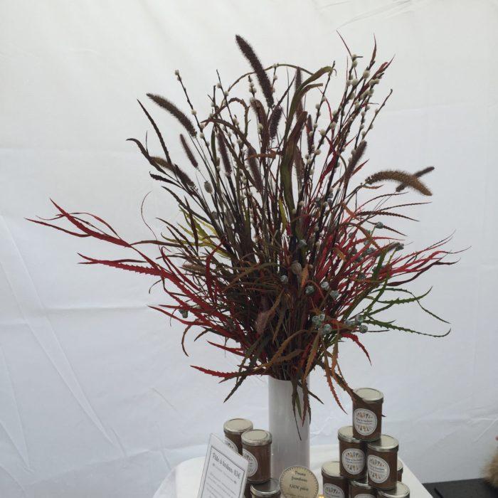 Grevillea, Saule japonica, Saule chaton, Pavot, Eucalyptus - composition sèche