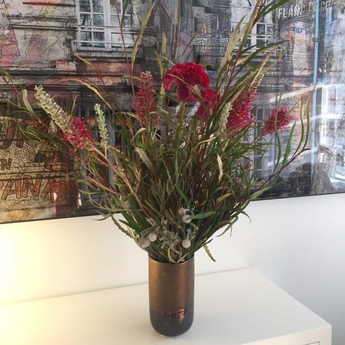 Célosie, fleurs et feuillage de Grevillea, Brunia - exotique - abonnement